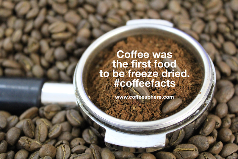 Coffee was the first food to be freeze dried. What else is freeze dried??
