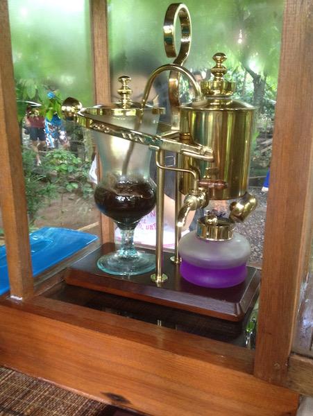 Brewing kopi luwak