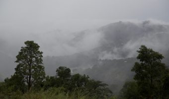 Finding Coffee and Adventure in the Puerto Rican Mountains