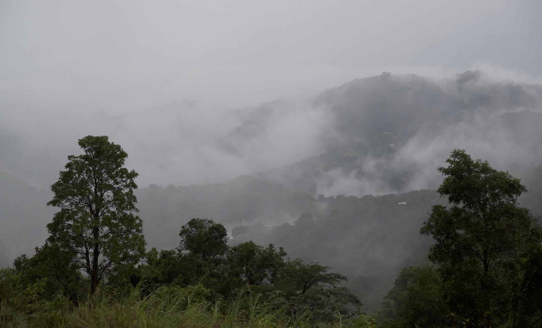 Misty clouds as seen in Hacienda Pomarossa
