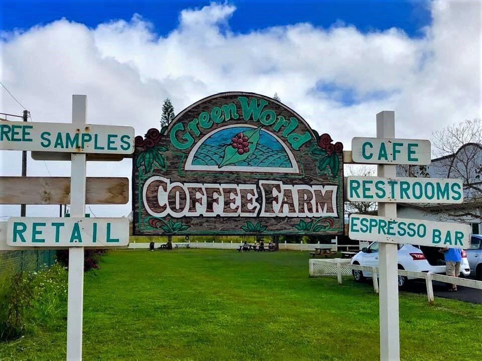 Green World Coffee Farm: Sipping Sunshine In Paradise - CoffeeSphere